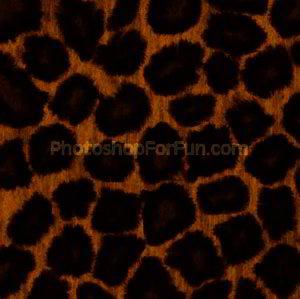 Photo Realistic Textures