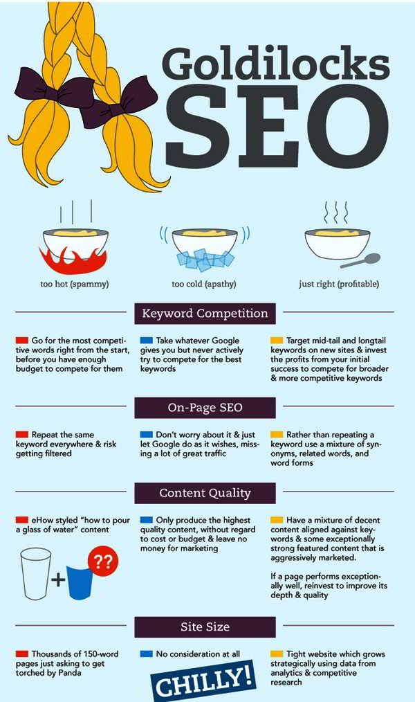 Infographics about SEO